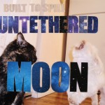 "Built to Spill Cracks CMJ's Top 10; Doug Martsch explains ""Untethered Moon"""